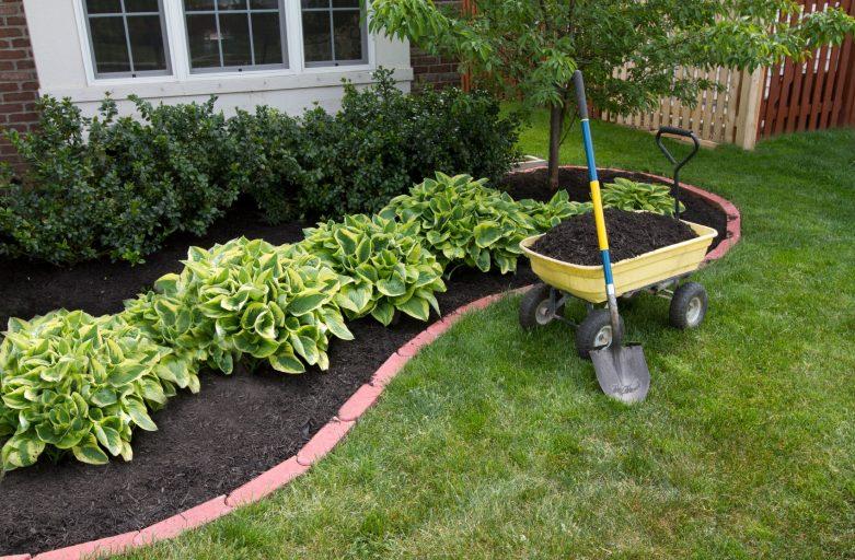 Mùn hữu cơ cho vườn xinh