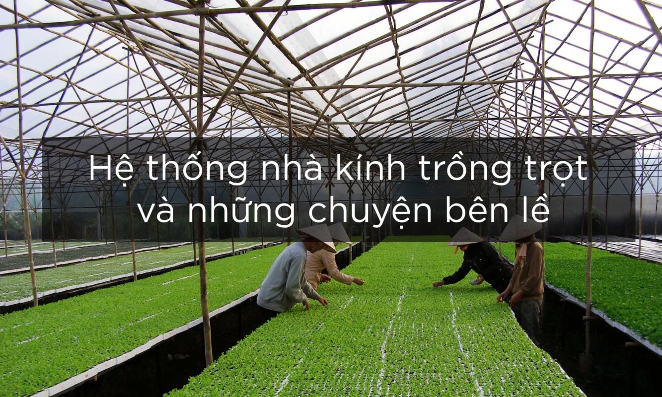 hệ thống nhà kính trồng trọt