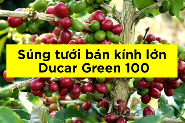 súng tưới ducar green 100