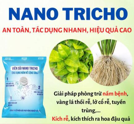 TOP 3 đơn vị phân phối viên sủi Nano Tricho chính hãng